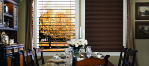 mobile blinds services in San Diego