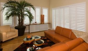 shutters in living room - shutters san diego